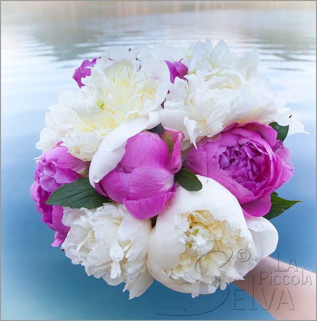 pink peonies bridal bouquet in Italy