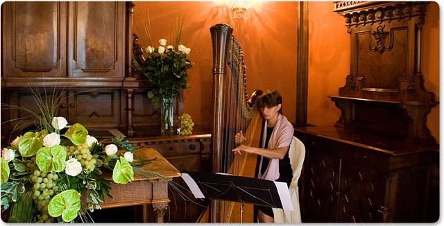 Italian Wedding Harpist