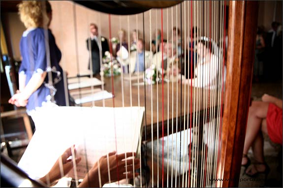 Wedding-harpist-in-Verbania
