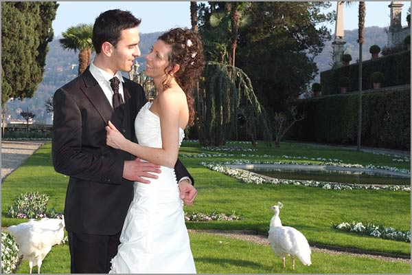 wedding-with-white-peacocks-on-Isola-Bella