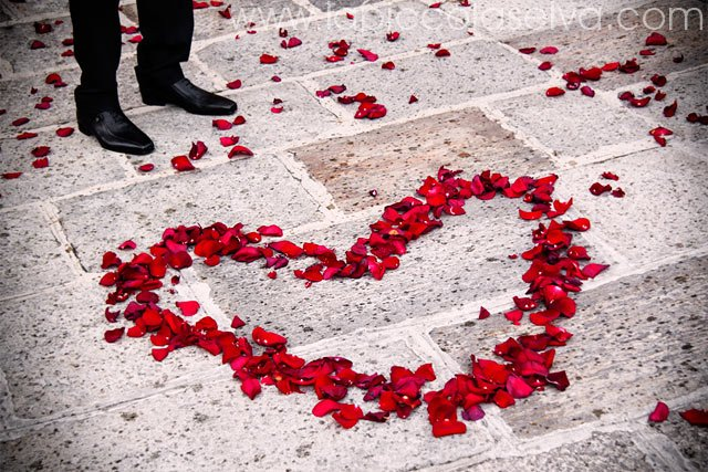 wedding red petals heart