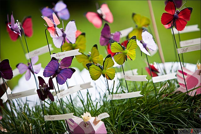 butterflies themed wedding in Italy