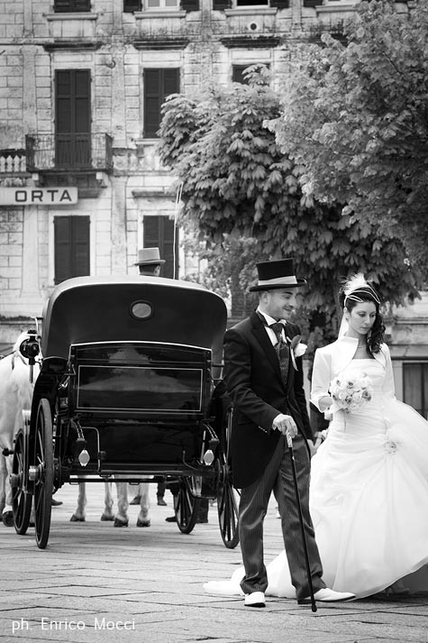 carriage-with-white-horses-wedding