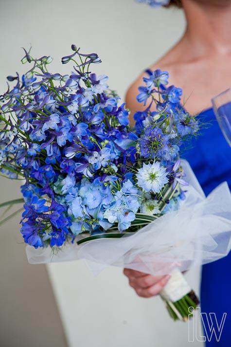 blue-delphinium-bouquet