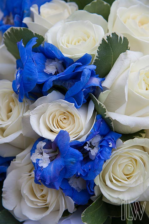 blue flowers used in weddings