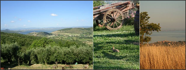 country-weddings-Lake-Trasimeno-Umbria