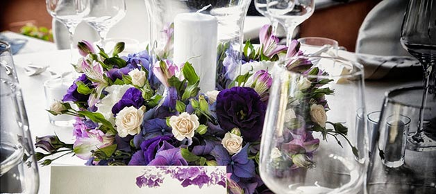 Purple inspiration!