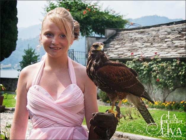 hawk wedding italy